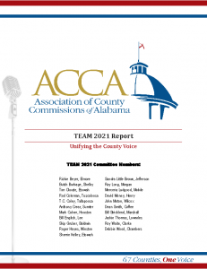 cover from TEAM 2021_Report_final